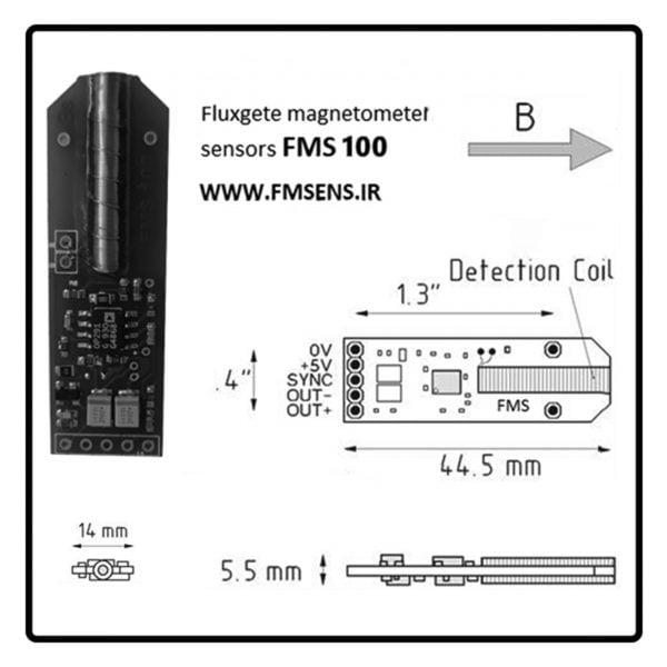 FMS 100